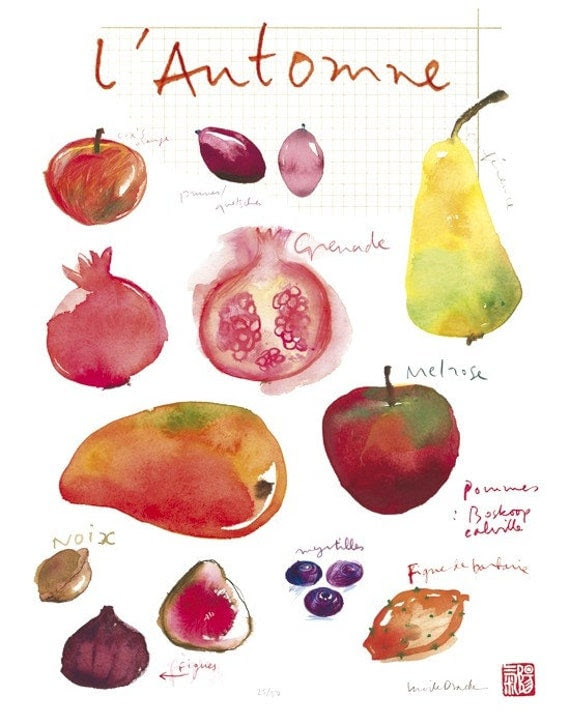 Fall fruits poster - 11 X 14 Limited edition print No 6/50 - Food art - The kitchen collection