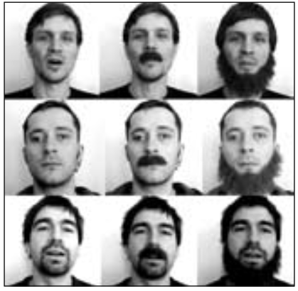 Time for a Shave: Does Facial Hair Interfere With Visual Speech ...