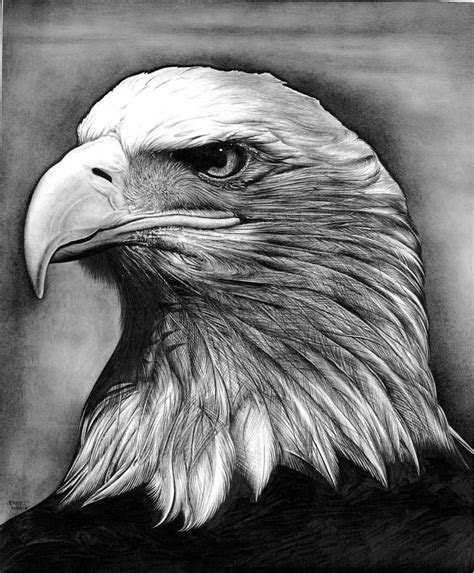 eagle  jerry winick   wood carvings pencil