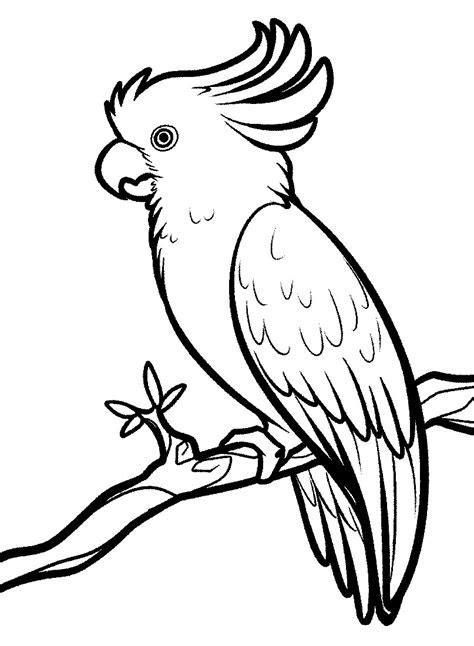 Gambar Animasi Burung Merpati Putih