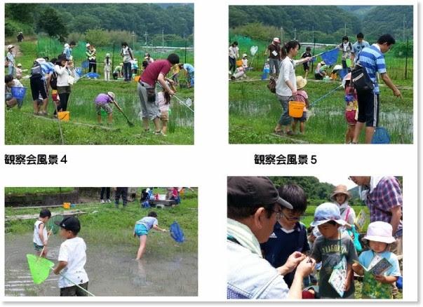 http://hitosato.jp/event/%E3%83%88%E3%83%B3%E3%83%9C%E6%B1%A0%E8%A6%B3%E5%AF%9F%E4%BC%9A2016-6-26.pdf
