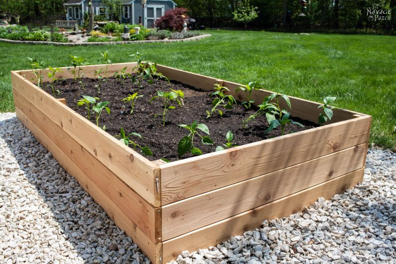 How To Build A Raised Garden Bed The Navage Patch