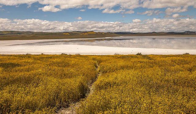 Trail to                   Soda Lake taken at Carrizo Plain National Monument in                   California