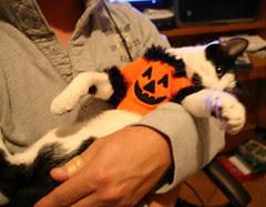 Abby's Halloween costume