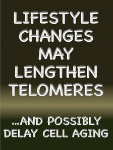 TelomeresAging