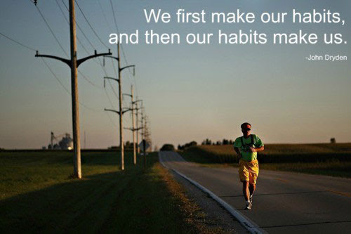We first make our habits and then our habits make us.