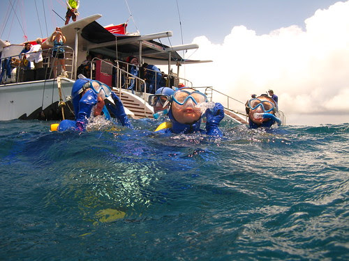Great Barrier Reef-Below Surface