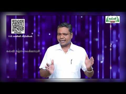 11th Computer Science இயக்க அமைப்பின் கோட்பாட்டு கருத்துக்கள் இயல் 4 Kalvi TV