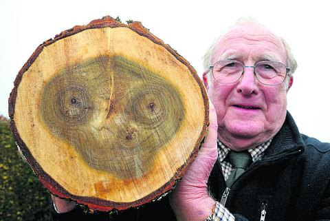 Ken Dobson of Chiseldon with the distinctive markings he found in a log he was cutting up