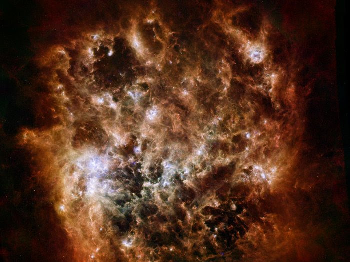 The tumultuous heart of the Large Magellanic Cloud