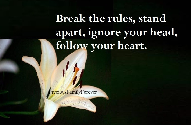 Follow Your Heart Quote Quote Number 608473 Picture Quotes