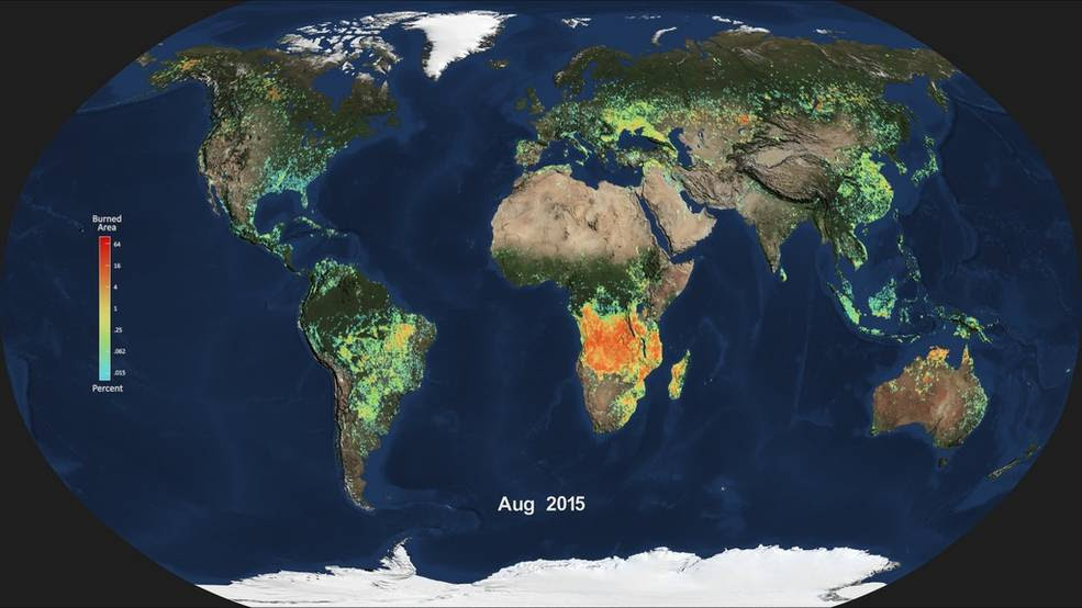 monthly average of global burned area for August 2015