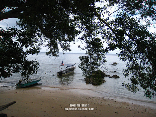 tioman island wallpaper