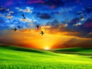 paz-autorrealizacion-paraiso-tranquilidad-serenidad