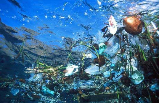 pacific gyre, pacific garbage patch, atlantic garbage patch, plastic, ocean, pollution, litter
