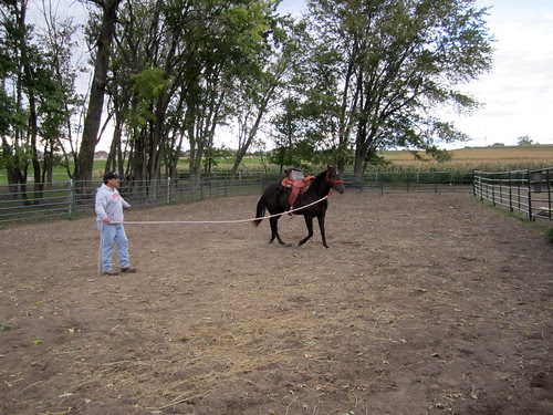 training_saddlelunge