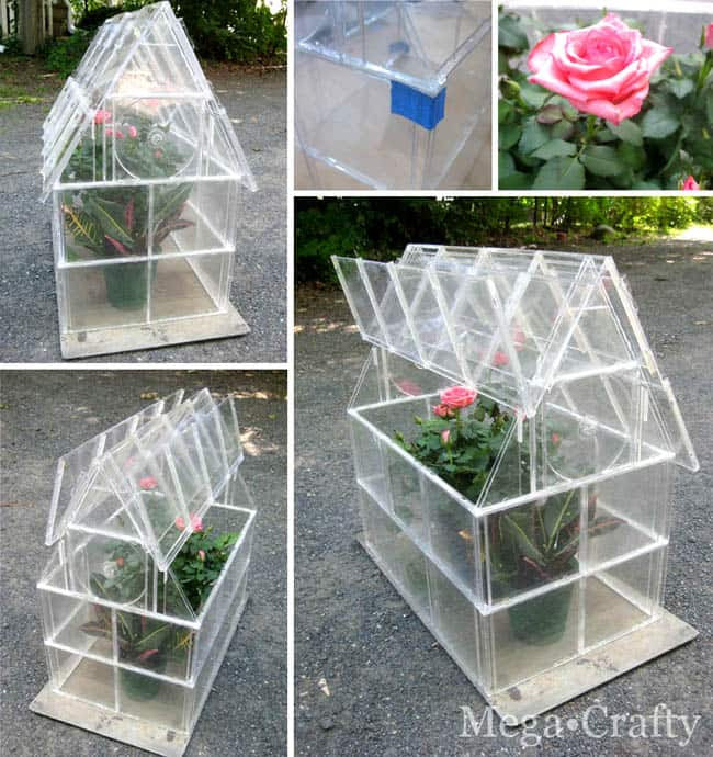 DIY-Greenhouses-with cd cases