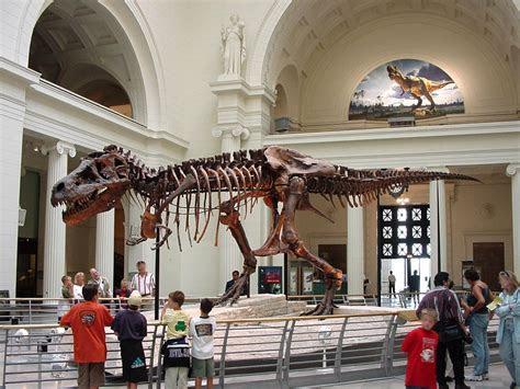 american museum  natural history ny usa full desktop