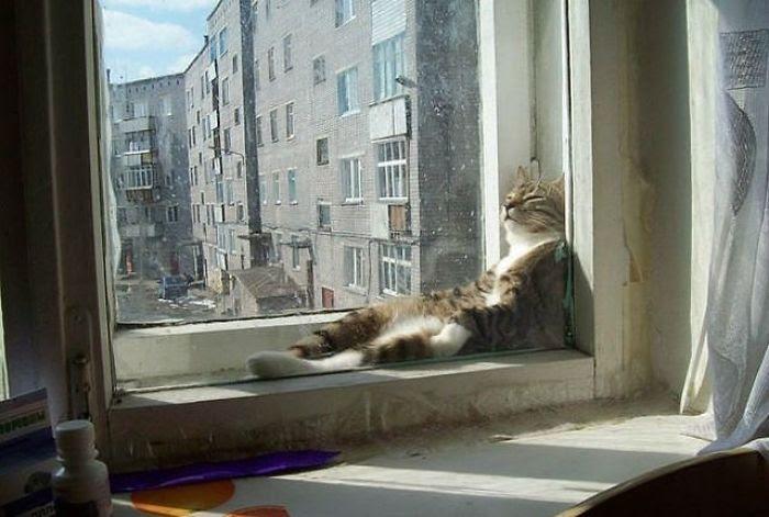 The Sun Is Sssoooo Warm