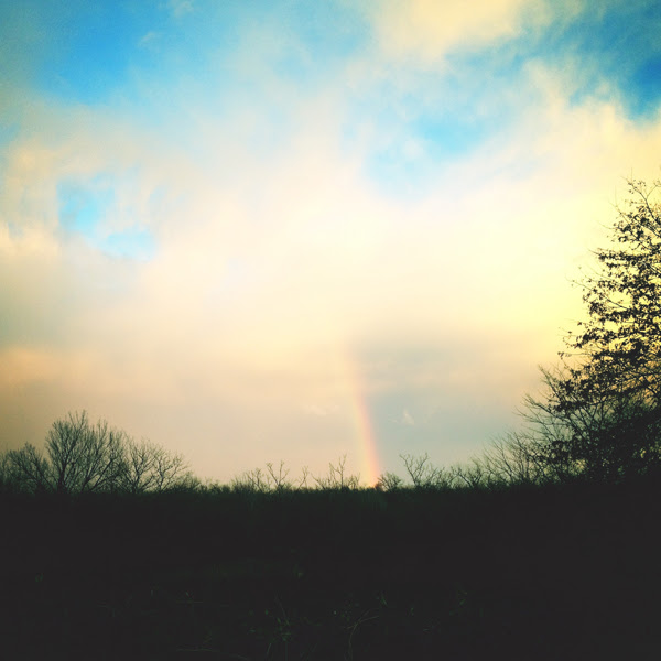 dream1rainbow