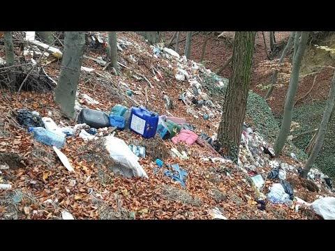 VIDEO Am găsit o groapă de gunoi în pădurea din Adâncata, pe marginea DN 29A. Am sesizat în scris Garda de Mediu Suceava