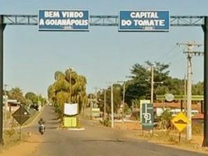 Goianápolis, considerada a capital do tomate em Goiás (Foto: Reprodução/TV Anhanguera)