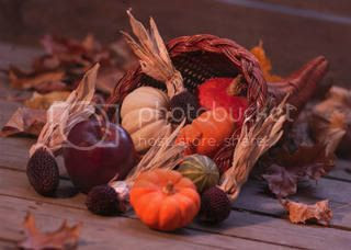 Cornucopia Pictures, Images and Photos