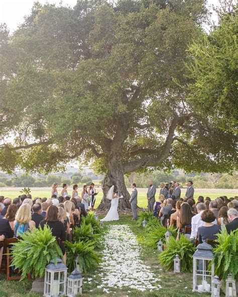 This enormous oak tree at Crossroads is the most beautiful