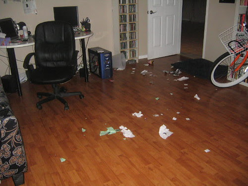 Someone got in the trash while we were at the library...I wonder who did it??