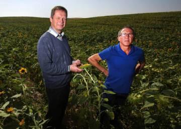 Una agricultura rentable sin pesticidas