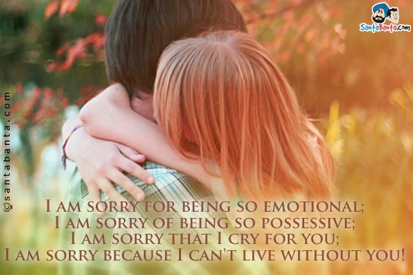 I Am Sorry And I Love You Quotes In Hindi Examples And Forms