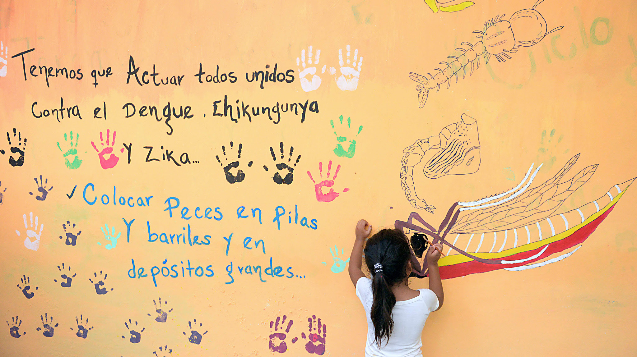 A girl paints a mural that edu...TOPSHOT - A girl paints a mural that educates people about a mosquito control project in the village of San Diego village, in La Libertad, Salvador, on February 4, 2016. People in San Diego are fighting the Aedes aegypti mosquito, vector of the Zika virus, which might cause microcephaly and Guillain-Barre syndrome in unborn babies.   AFP PHOTO / MARVIN RECINOS / AFP / Marvin RECINOSMARVIN RECINOS/AFP/Getty Images