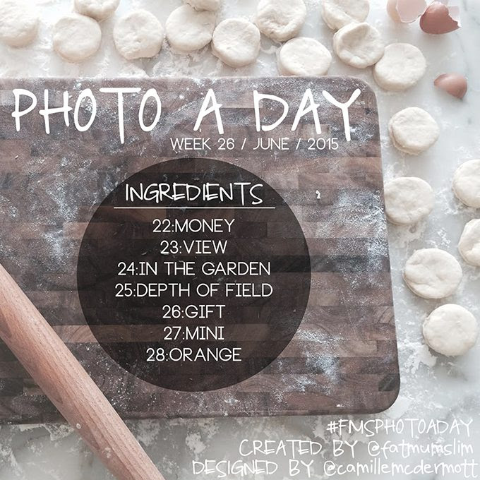 Photo A Day Challenge // Week 26