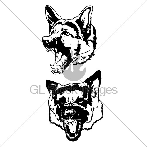 Attack Dog Isolated Stock Illustrations – 819 Attack Dog Isolated Stock  Illustrations, Vectors & Clipart - Dreamstime
