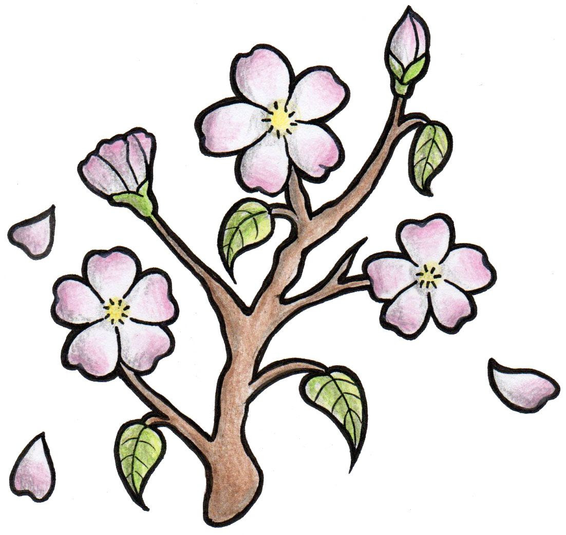 Japanese Cherry Blossom Clipart At Getdrawingscom Free For