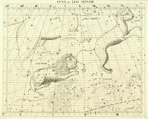 013-El lince y el Leon Menor-Atlas Coelestis 1729- John Flamsteed-University of Michigan Shapiro Science Library