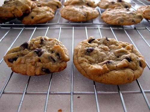 cookiechocolatechipdessertbible