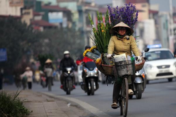 quê hương, hoa xuân