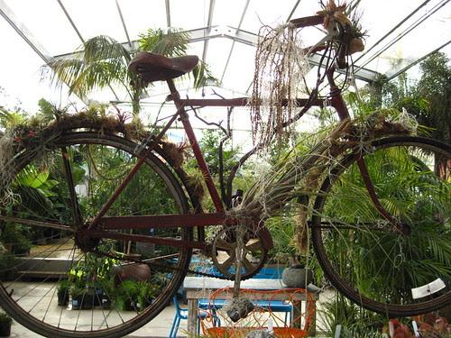 Hola flower bike.