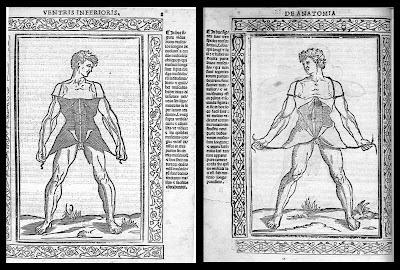 anatomical woodcuts by Berengario, 1523
