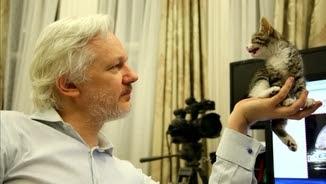 Julian Assange i el seu gat dins l'ambaixada de l'Equador a Londres