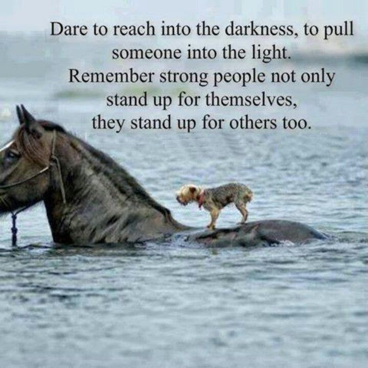 Quotes About Standing Up For Others 24 Quotes