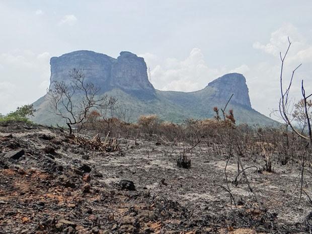 Vegetação foi afetada por incêndio nas proximidades do Morro do Pai Inácio, na Chapada Diamantina. (Foto: Portal Chapada)