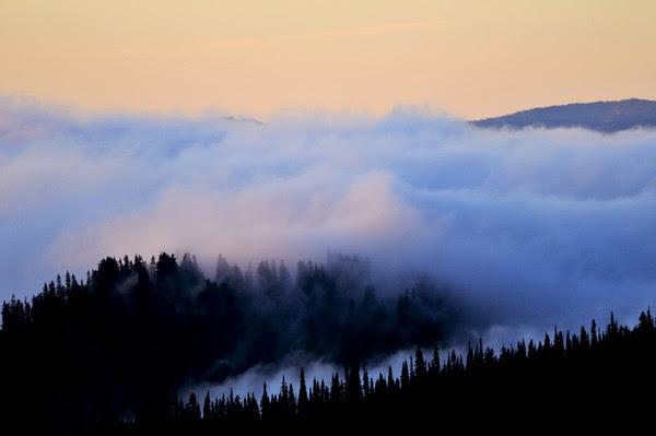 ...purple mist charming to the eye... Mark Twain