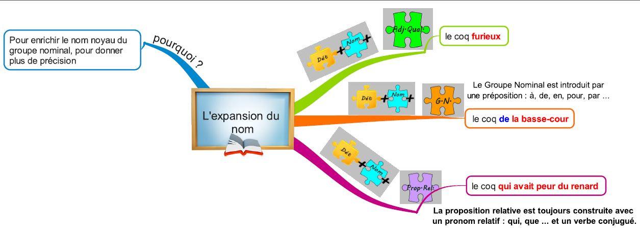 Créer et coopérer...: Les expansions du nom