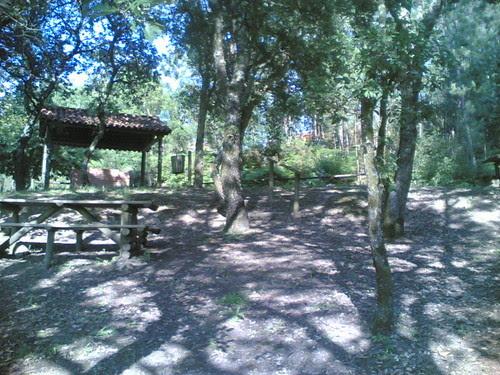 Parque de Merendas de Gatões: Parque (M-o-V)
