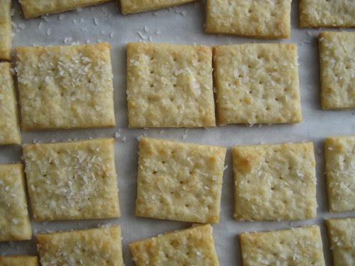 parmesan crackers.