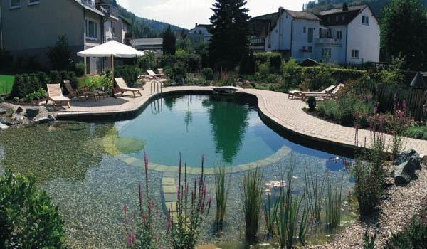 Backyard Swimming Pond Ideas