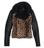 9-ALC-leopard