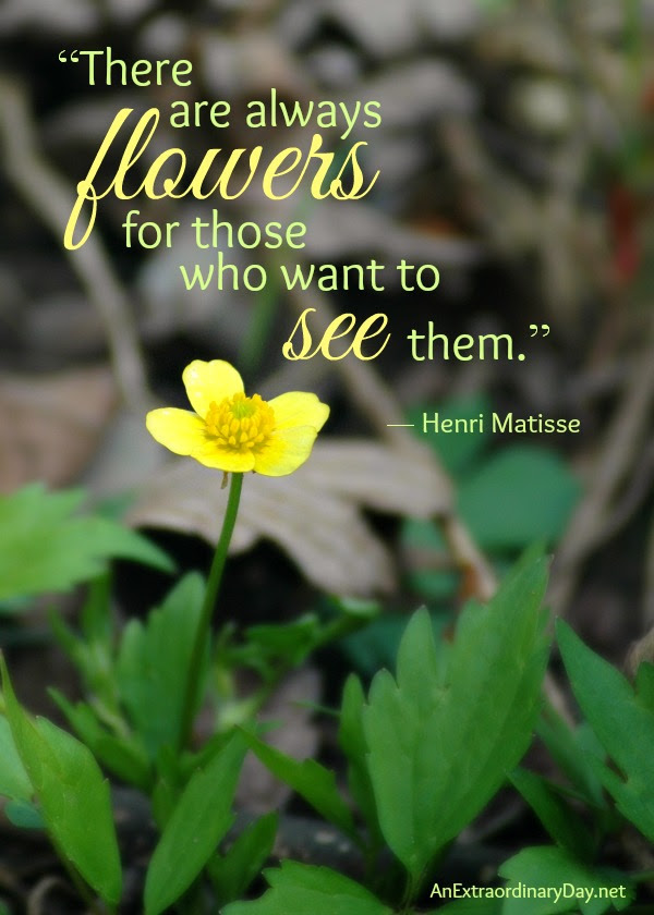 Flower Quote :: There are always flowers for those who want to see them. -Henri Matisse :: AnExtraordinaryDay.net